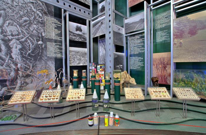 Ecologia Naturii și Culturii